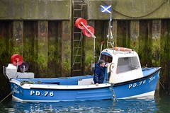 PD76 Tern - Boddam Harbour - Aberdeen Scotland - 30/5/2018 (DanoAberdeen) Tags: boddamfishingboat tern danoaberdeen 2018 trawlers trawlermen transport fishingtrawler trawler boddamharbour boddam fishingvillage candid amateur boats workboats harbour cod mackrel salmon scallops aberdeenscotland aberdeenshire danophotography wife fishingwife bothy boddamscotland autumn summer spring winter thistleseafoods peterhead buchan northsea whitefish shellfish pd76tern fish crabs seafarers fishingboat fishingtown maritime scotland scotch scottish fishingport lighthouse boddamharbourtrustees herring haddock coastline pier bluesky clouds haar buchanhaven visitscotland aberdeen fishermen lifeatsea nikond750 walk water schip vessels port seaport geotagged