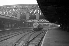 Nottingham Midland 13th October 1974 (loose_grip_99) Tags: nottingham uk railroad bridge england station train geotagged 1974 blackwhite diesel noiretblanc engine peak rail railway trains locomotive railways nottinghamshire midland midlands sulzer lms eastmidlands britishrailways gcr 1coco1 geo:lat=52947216 geo:lon=11457