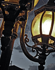 (scottintheway) Tags: leica light lamp lumix spiderweb panasonic lamppost tz1 abigfave
