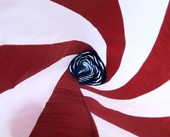 tunnel vision (Buggs Moran) Tags: usa unitedstates flag future tunnelvision cotcpersonalfavorite abigfave