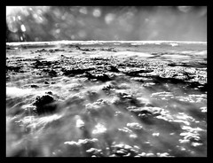 Clouds (wili_hybrid) Tags: autumn sky bw usa chicago fall clouds america plane austin geotagged photo yahoo high flickr unitedstates dynamic photos picture wolke pic 2006 september american wikipedia imaging nuage mapping range geotag tone hdr nube hdri pilvi coolclouds photomatix tonemapped tonemapping year2006 highdynamicrangeimaging