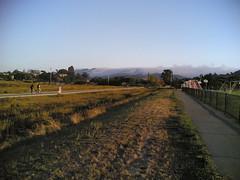 20060910T183914 (earthasa) Tags: sanfrancisco california park sunset fog bay sundown dusk thick rolling millvalley marshes rollingin ctxflickr