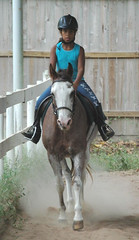"Young girl riding her pony (Saveena (AKA LHDugger)) Tags: red horse favorite motion english nature girl animal fauna female barn ilovenature appaloosa kid mare all child action no tx lisa any arena h rights form lesson written ungulate stable without usage equestrian reserved trot equine roan preteen equus allowed conroe consent equidae equuscaballus dugger quadruped herbivorous ""© texover saveena"""