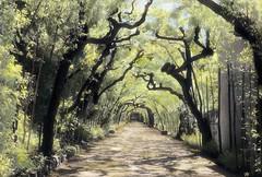 BoboliGardens (kekyrex) Tags: trees italy gardens landscape florence hand fineart infrared colored boboli