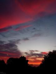 The heavens declare Jehovah's glory (MacSmiley) Tags: morning sky nature clouds sunrise canon dawn interestingness horizon 2006 powershot september tgif flickrexplore outstandingshots s3is jehovahscreation imagekind macsmiley 9152006