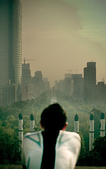 Reforma - Polluted (Luis Montemayor) Tags: trees green buildings mexico df pollution reforma contaminacion myfavs chapultepec