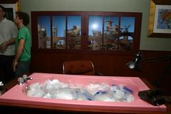 The bathtub from iThe Science of Sleep/i
