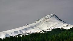 Mt. Hood in profile : - ) (Red Zena) Tags: ski tree wow lift profile mthood outstandingshots