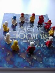 A clone of clones