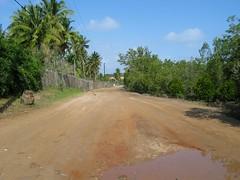 mini-09.10.2006 14-47-10 (danouch) Tags: de photo barbara plage bruno mozambique cocotier schade bienne journes fotofesta meinrad