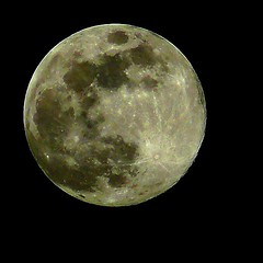 Luna Llena - Full Moon (jose_miguel) Tags: friends espaa moon amigos miguel lumix spain bravo zoom gracias merci obrigado jose luna full panasonic morocco maroc marrakech tele marrakesh marruecos grazie fz50 llena interestingness3 shukran thanyou magicdonkey instantfave explore3 outstandingshots specnature marraquech mywinners abigfave artlibre shieldofexcellence anawesomeshot impressedbeauty