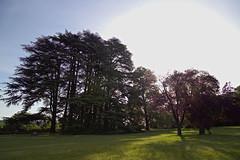 Le 'Domaine des séquoias' Bourgoin-France