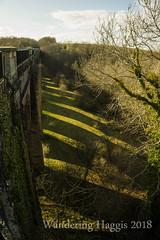 Avon Gorge Viaduct (wanderinghaggis) Tags: canal water way viaduct shadow stone path outdoor scene sony a6000 linlithgow hugh baird thomas telford aqueduct tree wood lines