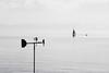 000461 (la_imagen) Tags: sw bw blackandwhite siyahbeyaz monochrome lake see göl bodensee laimagen lakeconstanze lagodiconstanza lagodeconstanza friedrichshafen silence ruhe sakinlik