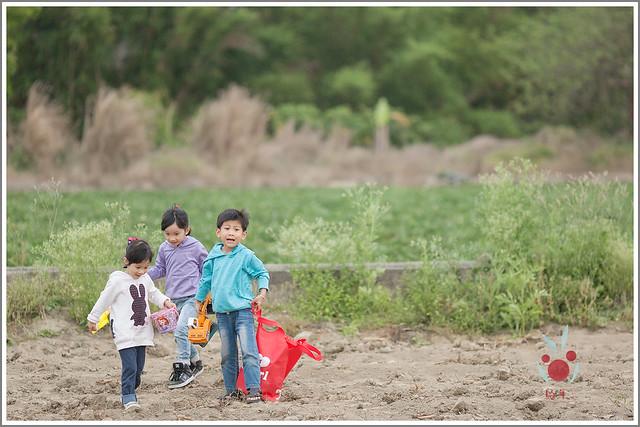 火龍果園星光野餐Ⅱ 找地瓜 烤地瓜 吃地瓜 (8)