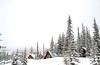 (photo baron) Tags: bigwhite snow trees mountains