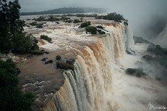 Iguazú - Paraná - Brasil (Martín Melo Garay) Tags: iguazu cascada waterfall nature animal green aves water agua brasil argentina wonder
