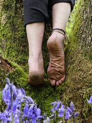 Barefoot above bluebells (Barefoot Adventurer) Tags: barefoot barefooting barefoothiking barefooter barefeet barefooted baresoles barfuss strongfeet healthyfeet happyfeet hardsoles climb treestump toughsoles ruggedsoles roughsoles heelcracks hiking anklet callousedsoles connected leathersoles leathertoughsoles livingleather wrinkledsoles woodland walk callouses naturallytough naturalsoles nature toes texture earthsoles earthstainedsoles earthing barefootwalking woodlandsoles
