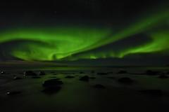 Aurora over the water (Rudi Verspoor) Tags: lofoten northernlights aurora february cold beach water nightsky sky seascape stars green nikon d7200 1020mm wideangle longexposure norway europe