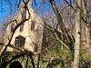 THE OLD MULE BARN RUIN IN APRIL 2018 (richie 59) Tags: ulstercountyny ulstercounty newyorkstate newyork unitedstates trees kingstonny kingston rondoutny rondout downtownkingstonny downtownkingston abandoned vacant spring richie59 overgrown abandonedbuilding vacantbuilding america outside weekday friday downtown 2018 april202018 april2018 2010s hudsonvalley midhudsonvalley midhudson ny nys nystate usa us city smallcity urban concretebuilding oldconcretebuilding oldbuilding weeds grass ruin rotting building