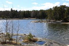 April in Stora Svartö (liisatuulia) Tags: lähteelä storasvartö archipelago saaristo porkkala spring