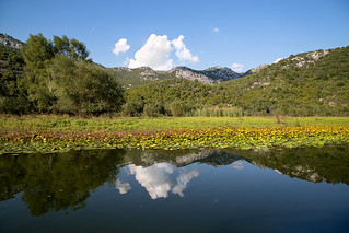 reflection on lake skadar