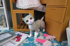 Good company (Foxy Belle) Tags: skipper desk diorama homework doll vintage pajamas room rement 16 scale playscale cat pet slippers