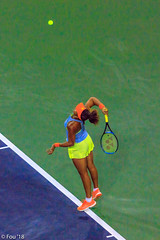 0I7A0498.jpg (Murray Foubister) Tags: 2018 california spring palmsprings usa competition tennis