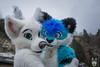 DSC_0150 (BerionHusky) Tags: fursuit mascot costume monschau furry fur