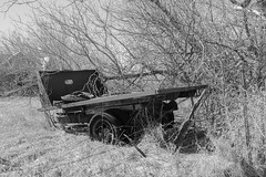 The End of the Road (gabi-h) Tags: dilapidated rusty decaying gabih grass brush old monochrome blackandwhite march oldtires treebranches stark princeedwardcounty backroads rural oldmachinery fence
