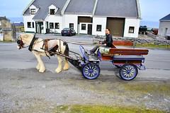 DSC_8513 (seustace2003) Tags: gaillimh galway ierland ireland irlanda inis oírr aran islands gaeltacht