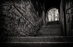Ode to 'A sea of steps' - Bath (Daz Smith) Tags: dazsmith fujixt20 fuji xt20 andwhite bath city streetphotography people citylife thecity urban streets uk monochrome blancoynegro blackandwhite mono seaofsteps steps