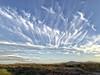 MARES' TAIL CIRRUS (northern_nights) Tags: cirrusincinus cirrus marestailcirrus clouds vail arizona cell sunset unusualclouds cloudscape