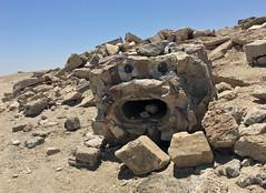 Face in the Rocks (cowyeow) Tags: saltonsea beach old desert california usa america bombaybeach wasteland ruins debris funny rocks face creepy scary weird monster