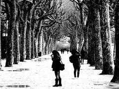 Momentos (verridário) Tags: black mono monochrome preto branco bianco coimbra parque bw nero negro people gente pessoas rua street white arvore noir foto picture photo sony