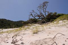 ThiagoFreitas_IlhadoFarol_ArraialdoCabo_RJ (MTur Destinos) Tags: areia praia ilhadofarol arraialdocabo riodejaneiro lazer férias natureza paisagem turismo mturdestinos