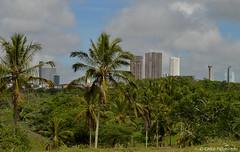 Campina Grande - Paraíba - Brasil. (Chico Figueiredo) Tags: nuvens paisagem panorâmica arquitetura amanhecer cidadesbrasileiras nordeste nordestedobrasil agreste agrestedaparaíba