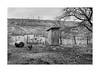 Birds (Jan Dobrovsky) Tags: carpathians countryside toilet birdsleicaq landscape ukraine garden monochrome people reallife blackandwhite outdoor mud village countrylife document