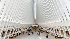 Oculus (Perurena) Tags: oculus arquitectura vanguardia estructura arte calatrava estación transporte gente people arcos arc blanco manhattan nuevayork estadosunidos usa