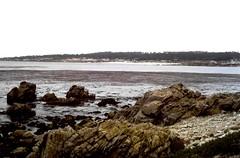 Bird Rock Vista Point (moacirdsp) Tags: bird rock vista point rd pebble beach monterey county california usa 1977