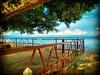 78300 Masjid Tanah, Malacca https://goo.gl/maps/aRcaqkj7EPL2  #travel #holiday #traveling #trip #Asian #Malaysia #旅行 #度假 #亚洲 #马来西亚 #วันหยุด #การเดินทาง #ホリデー #휴일 #여행 #праздник #путешествие #马六甲 #Malacca #beach #pantai #海滩 #tree #sand #nature #大自然 #kampung (soonlung81) Tags: trip วันหยุด beach 马来西亚 malaysia путешествие 휴일 旅行 nature 亚洲 pantai malacca sand 여행 asian 大自然 海滩 度假 traveling ホリデー การเดินทาง holiday праздник tree kampung 马六甲 travel
