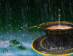 Whimsical (AstraGenesis) Tags: rain cappuccino whimsical picazzo