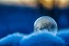 Soap Bubble (Benjamin Schwitz) Tags: soap bubble bokeh outdoor frozen gefroren seifenblase winter macro makro canon ef100mm