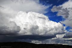 _DSC0671 (tonomf) Tags: nubes clouds cielo sky azul blue blanco white nikon nikond5100
