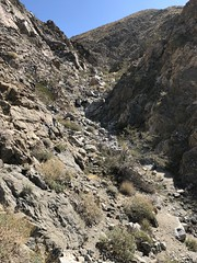 2018-03-01 GOPS Hike Spa Museum (117) (MadeIn1953) Tags: 2018 201803 20180301 greatoutdoorsgo california coachellavalley riversidecounty deserthotsprings dhs go greatoutdoorspalmspringsgops gops hiking bricescanyon