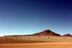 Bolivia (mbphillips) Tags: mbphillips sigma1835mmf18dchsm canon450d 玻利维亚 南美洲 볼리비아 남아메리카 ボリビア 南アメリカ sudamérica américadelsur 玻利維亞 southamerica landscape paisaje 景观 景觀 경치 geotagged photojournalism photojournalist altiplano travel bolivie bolivien bolivia