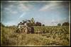 Deux mondes différents (dangui89) Tags: vignes éolienne paysage nature machine vendange france bourgogne yonne chitrylefort guillierdanielphotofr