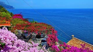 Flower Roof in Amalfi