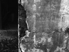 - (mkbls) Tags: wall crackedwalls abandoned house oldhouse abandonedhouse blackandwhite details minasgerais brazil