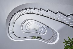 Organic architecture (Janette Paltian) Tags: janettepaltian 650d canon weitwinkel wide angle berlin germany deutschland stairs treppe wendeltreppe weis white organic architecture architektur lookingup spiralstaircase staircase stairwell green plants pflanze monochromatic